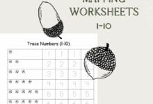 Number Mapping Worksheets 1-10 2