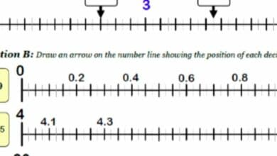Why a Calculator Decimal Worksheet is Used 6