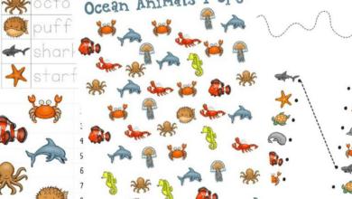 Ocean Animals Activities and Printables for Preschool and Kindergarten