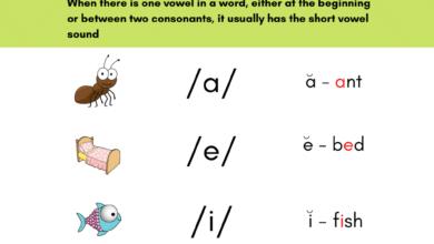 Short Vowels Worksheets and Activities for Kindergarten